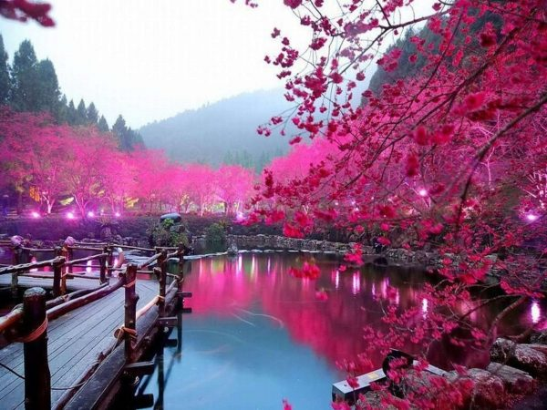 تور ژاپن – JAPAN ( ویژه نوروز 97 – تاریخ حرکت 28 اسفند ماه ) – از تهران